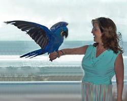 What A Bird Brain Artist in Schools Program